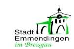 Stadt EM Icon